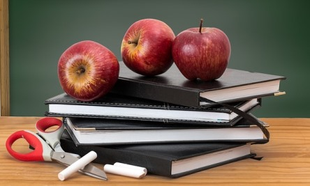 """Back to School"": Join Our CONFIRMED Autumn Courses!"